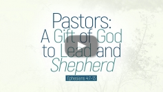 Pastors: A Gift of God to Lead and Shepherd