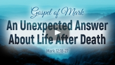 The Unexpected Answer About Life After Death