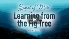 Learning from the Fig Tree