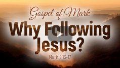 Why Following Jesus?