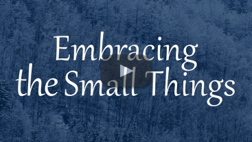 Embracing the Small Things